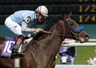 Sweet Catomine Towers Over SA Oaks Field