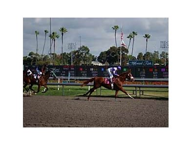 Hollywood Park opens for its 70th racing season on April 22.