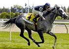 Champion Financingavailable Retired