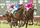 Mabee winner Musical Chimes, left, early favorite in Saturday's Beverly D. at Arlington Park.