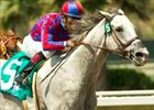 "Pat O'Brien winner Greg's Gold looks for 2 in row in the Ancient Title.<br><a target=""blank"" href=""http://www.bloodhorse.com/horse-racing/photo-store?ref=http%3A%2F%2Fpictopia.com%2Fperl%2Fgal%3Fprovider_id%3D368%26ptp_photo_id%3D2051419%26ref%3Dstory"">Order This Photo</a>"