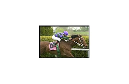 Kim Loves Bucky showed his affinity for the Keeneland turf course with Wednesday's Elkhorn win.
