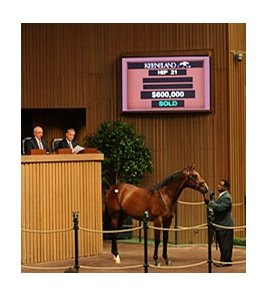 Hip 21 sold for $600,000 at the Keeneland September Sale.