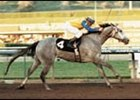Lady's Secret, at one time was leading earner among female horses.