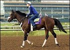 Magistretti worked over the soft course at Lone Star Park in preparation for Saturday's John Deere Turf competition.