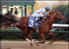 Lawyer Ron continued on the road to the Kentucky Derby with a victory in the Southwest Stakes.