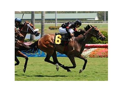 Elvis Trujillo scored his 1,000 career victory aboard Bahia Girl at Gulfstream Park April 12.