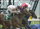 Posse Closes to Nose Out Midas Eyes in Riva Ridge