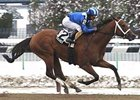 Taqarub won the Jimmy Winkfield Stakes at Aqueduct Jan. 19.
