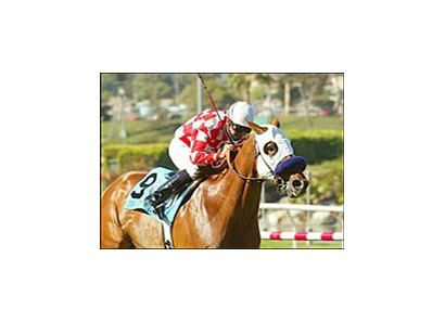 Designed For Luck wins the Shoemaker Breeders' Cup Mile, Monday at Hollywood Park.