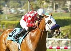 Another Miracle Mile for Designed for Luck