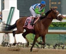 Undefeated Barbaro Conquers All in Derby