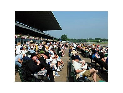 The Belmont crowd arrived early and wagered often.