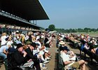 The crowd prior to the start of the card on Belmont Stakes Day.