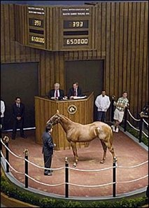 Giant's Causeway colt, sold for $650,000 Tuesday.