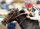 Greek Sun retires to the Maryland Stallion Station to begin his stud career in 2008.