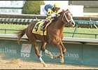 Indian Vale is one of three Breeders' Cup Distaff (gr.1) entries for trainer Todd Pletcher.