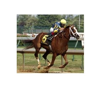 Fleur de Lis Handicap winner Indian Vale tops the field for Sunday's Delaware Handicap.