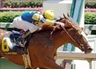 Gouldings Green and Corey Lanerie (near) hold on to beat Wild Desert to the wire in the Alysheba.