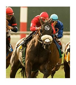 Enriched, who finished third in the Eddie Read on July 24, will be ridden by Patrick Valenzuela in the San Diego.