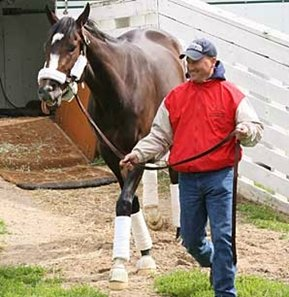 Rachel Alexandra is led off the van by Scott Blasi upon her return to Churchill Downs from Pimlico.