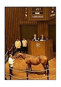 I'll Get Along, the dam of Smarty Jones, sold for $5 million.