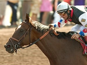 Siren Lure After Milestone in SF Mile