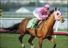 Saint Liam, winning the Donn Handicap, could run in the Santa Anita Handicap.