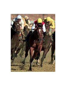 Reraise, with Corey Nakatani in the stirrups (center with red jersey) drives from the final turn ahead of the pack for the win in the Breeders' Cup Sprint at Churchill Downs Saturday, Nov. 7, 1998.