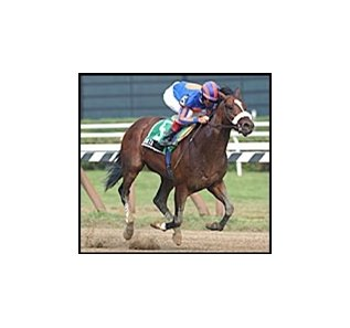 Saratoga Special winner Zavata, tops Hopeful field.