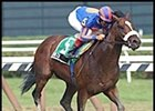 Zavata, winning the Saratoga Special.