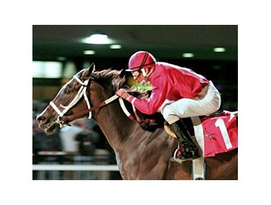 Miss Macy Sue, shown winning the 2007 Presque Isle Downs Masters Stakes, will be back to defend her title in 2008.