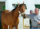 Trainer Bruce Levine with Buddy's Saint.