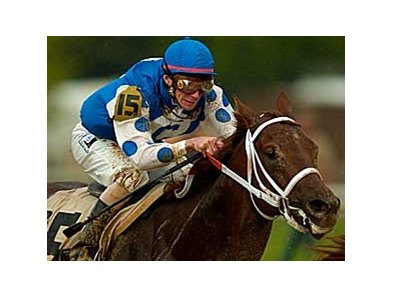 The 2004 Kentucky Derby victory by Smarty Jones apparently has done more for Pennsylvania racing than more than 100 Derbies and a long racing history have done for Kentucky, at least as far as legislation goes.