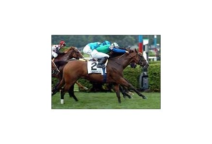 "Angara, Fernando Jara aboard, wins the Diana Stakes, Saturday at Saratoga.<br><a target=""blank"" href=""http://www.bloodhorse.com/horse-racing/photo-store?ref=http%3A%2F%2Fpictopia.com%2Fperl%2Fgal%3Fgallery_id%3D7509%26process%3Dgallery%26provider_id%3D368%26ptp_photo_id%3D454189%26sequencenum%3D0%26page%3D"">Order This Photo</a>"