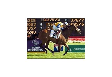 The Tin Man shines brightest in Arlington Million.