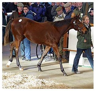 Colt, Galileo - Epping, purchased for 470,000 gns ($990,546).