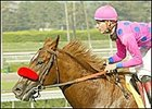 No Slowing Avanzado in Ancient Title Romp