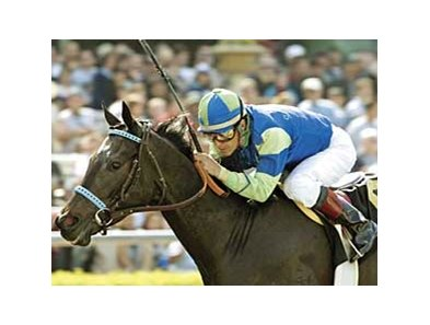 Declan's Moon won the 2005 Santa Catalina (gr. II).