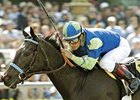 Champ Declan's Moon Retired to Merryland