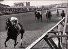 "Ruffian - Acorn Stakes<br><a target=""blank"" href=""http://www.bloodhorse.com/horse-racing/photo-store?ref=http%3A%2F%2Fpictopia.com%2Fperl%2Fgal%3Fprovider_id%3D368%26ptp_photo_id%3D399766%26ref%3Dstory"">Order This Photo</a>"