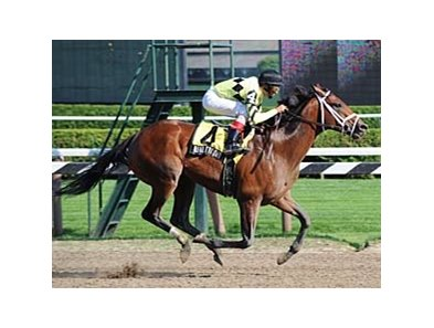 "Quality Road's Amsterdam is still a track record.<br><a target=""blank"" href=""http://www.bloodhorse.com/horse-racing/photo-store?ref=http%3A%2F%2Fpictopia.com%2Fperl%2Fgal%3Fprovider_id%3D368%26ptp_photo_id%3D8382660%26ref%3Dstory"">Order This Photo</a>"