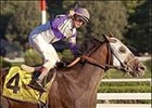 Ten Most Wanted, working toward Breeders' Cup Classic.