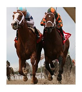 "El Padrino (left) outfinishes Mark Valeski to win the Risen Star.<br><a target=""blank"" href=""http://www.bloodhorse.com/horse-racing/photo-store?ref=http%3A%2F%2Fpictopia.com%2Fperl%2Fgal%3Fprovider_id%3D368%26ptp_photo_id%3D9818527%26ref%3Dstory"">Order This Photo</a>"