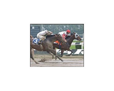 Humorous Lady, inside, goes wire-to-wire to win the Astarita at Belmont Park on Sunday.