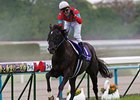 Beat Black wins the Tenno Sho Spring