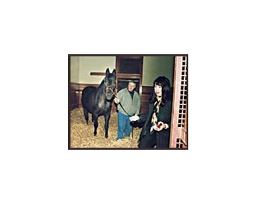 As he settled in to his stall at Hill 'n' Dale Farm on Monday, Seattle Slew awaits an apple from co-owner Karen Taylor, right, while groom Tom Wade holds the horse.