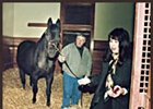 Seattle Slew, after moving to Hill 'n' Dale Farm.