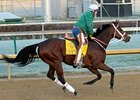 Jones: Havre de Grace to Run Again in 2012