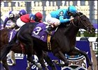Squirtle Squirt, winning the Breeders' Cup Sprint.